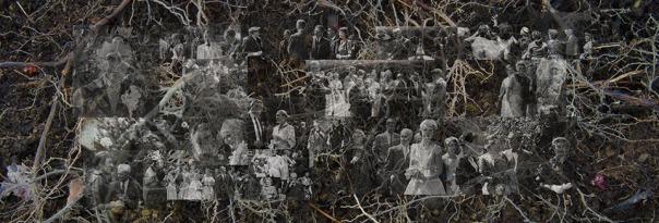 Linn Underhill, Roots, 2015 (Archival Inkjet Print)